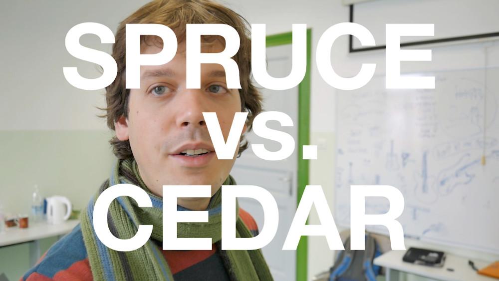 Spruce vs. Cedar Guitars (Michele Della Giustina)